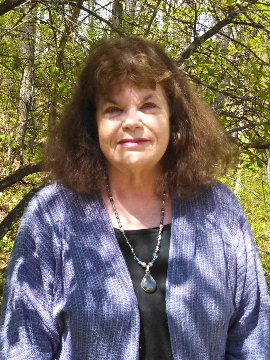 who is sharyn mccrumb John sevier had not taken much interest in the american revolution homesteading in the carolina mountains, sevier was too busy fighting indians and taming the.